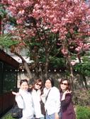 ╔☆韓國遊~3☆╗:1659204092.jpg