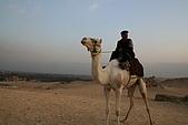 2005 埃及之旅:s0002
