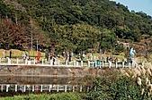大溪慈湖與角板山:大溪慈湖與角板山001.jpg