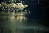 大溪慈湖與角板山:大溪慈湖與角板山016.jpg
