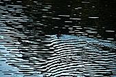 大溪慈湖與角板山:大溪慈湖與角板山017.jpg