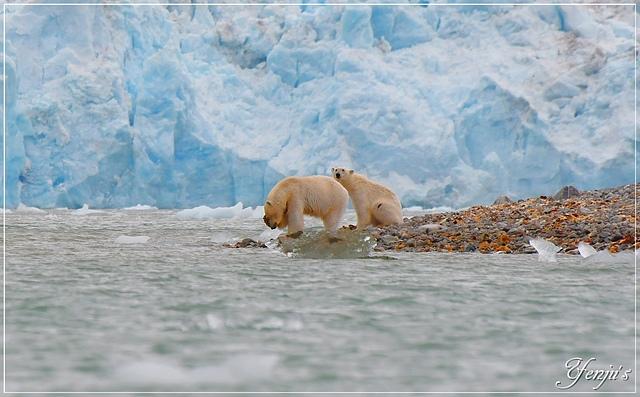 DSC_6468.JPG - 2019北極之旅航程中