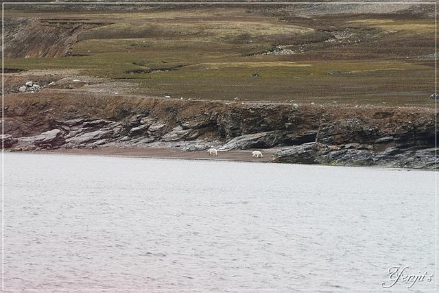 DSC_6161.JPG - 2019北極之旅航程中