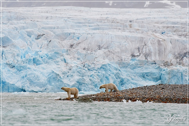 DSC_6450.JPG - 2019北極之旅航程中