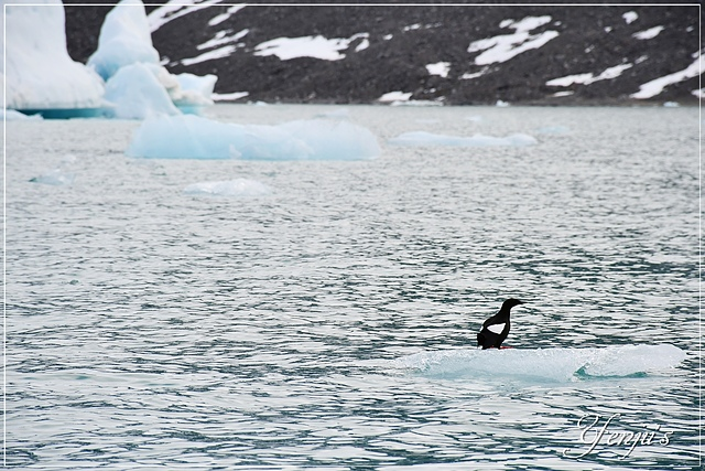 DSC_3667.JPG - 2019北極之旅航程中