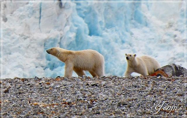 DSC_6389s.JPG - 2019北極之旅航程中