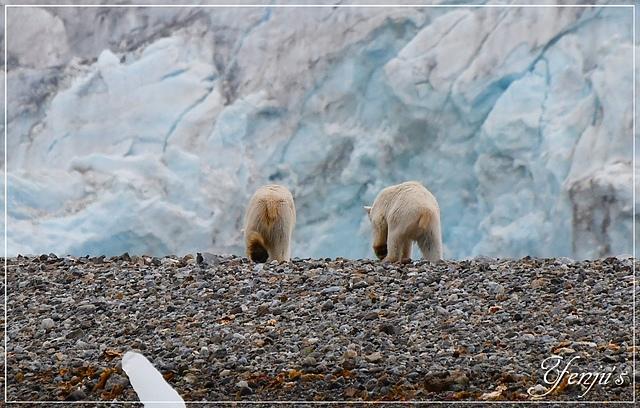DSC_6408.JPG - 2019北極之旅航程中
