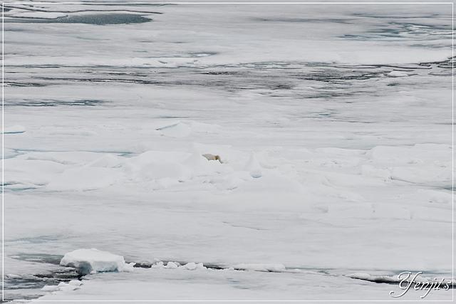 DSC_4650.JPG - 2019北極之旅航程中