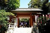 東京自由行Day4~Day6:DSC_1055.JPG