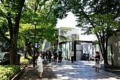 東京自由行Day4~Day6:DSC_1082.JPG