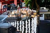 東京自由行Day4~Day6:DSC_1037.JPG