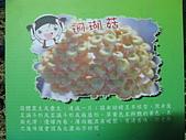2008-11新社-百菇莊:2008-11-24百菇莊_0005.JPG