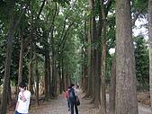 六龜-新威森林公園 2009-1-28:2009-1-29新威森林公園_0018.JPG