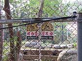 六龜-新威森林公園 2009-1-28:2009-1-29新威森林公園_0019.JPG