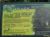 六龜-新威森林公園 2009-1-28:2009-1-29新威森林公園_0002.JPG