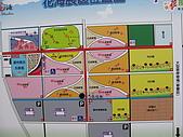2008-11新社花海節:2008-11-24新社花海0005.JPG