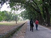 六龜-新威森林公園 2009-1-28:2009-1-29新威森林公園_0008.JPG