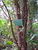 六龜-新威森林公園 2009-1-28:2009-1-29新威森林公園_0010.JPG