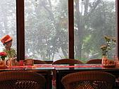 苗栗公館-油桐花坊~喝下午茶:ap_f23_20100521053102820.jpg