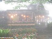 苗栗公館-油桐花坊~喝下午茶:ap_f23_20100521053103957.jpg