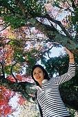 941029-941030>>福壽山&梨山&武陵農場:F1000010