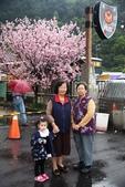 1050309>>就愛賴在中台灣:IMG_7133.JPG