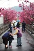 1050309>>就愛賴在中台灣:IMG_7149.JPG