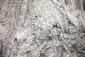 1040403~05>>南台灣三日遊之Day-1高雄田寮月世界&凱旋/金鑽夜市<<:IMG_1018.JPG