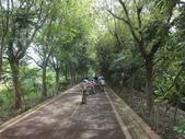 1030817>>東豐自行車之逆飛小夥子:DSC02599.JPG