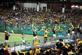 1050702>>台中洲際棒球場兄弟vs義大:_MG_9143.JPG