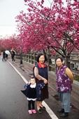 1050309>>就愛賴在中台灣:IMG_7140.JPG