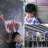 1020619>>台中自然科學博物館恐龍展:相簿封面