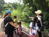 1030817>>東豐自行車之逆飛小夥子:DSC02633.JPG