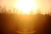 1040403~05>>南台灣三日遊之Day-1高雄田寮月世界&凱旋/金鑽夜市<<:IMG_1048.JPG