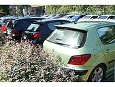 990117>>Peugeot 307club之新竹車聚:550F9216(001).jpg