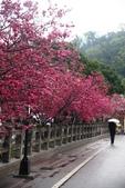 1050309>>就愛賴在中台灣:IMG_7148.JPG