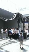 1020619>>台中自然科學博物館恐龍展:IMAG0029.jpg