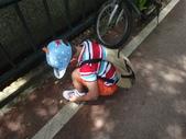 1030817>>東豐自行車之逆飛小夥子:DSC02692.JPG