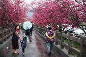 1050309>>就愛賴在中台灣:IMG_7151.JPG