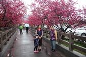 1050309>>就愛賴在中台灣:IMG_7153.JPG