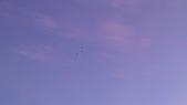 1030711~0714 DAY2 2014台灣熱氣球嘉年華+綠島我來嚕:IMAG2275.jpg