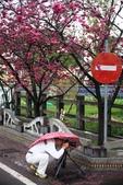 1050309>>就愛賴在中台灣:IMG_7142.JPG