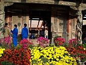 「愛現花遊記」投稿相簿:[bbbb0814] 鹿港龍山寺前的菊花
