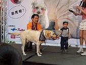 狗狗徵婚派對(20060311):100_0925
