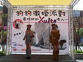 狗狗徵婚派對(20060311):100_0909