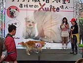 狗狗徵婚派對(20060311):100_0921