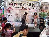 狗狗徵婚派對(20060311):100_0915