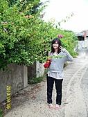 「愛現花遊記」投稿相簿:[bbbb0814] 澎湖廢棄眷村的不知名小花