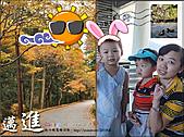 2010『秋日楓菊趣景點大募集!』:[charlie_t28] 好好玩的明信片
