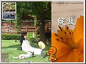 2010『秋日楓菊趣景點大募集!』:[yurilin] 幸福的照片